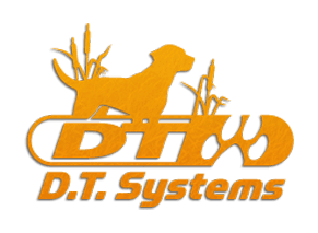 DT Systems logo