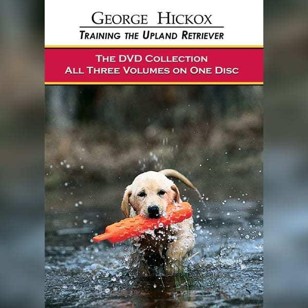 DVD Collection Upland Retriever